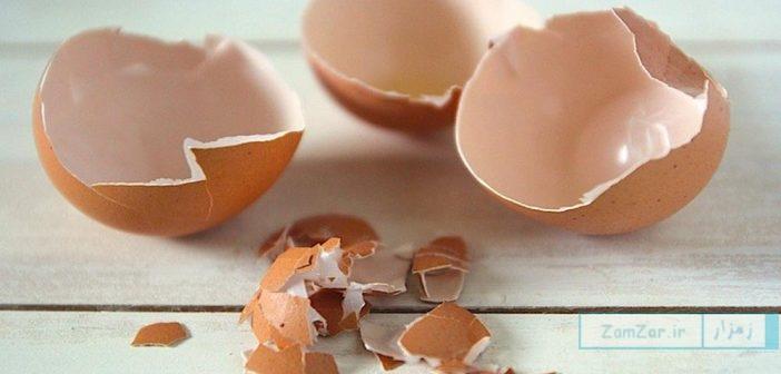 آشنایی با ۶ خاصیت درمانی پوست تخم مرغ