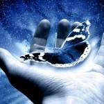 ۱۱ سخن و حدیث از لقمان حکیم