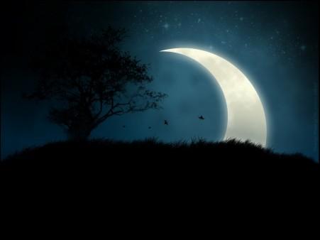 آوازی از پنجره ماه … (سیاوش کسرایی)