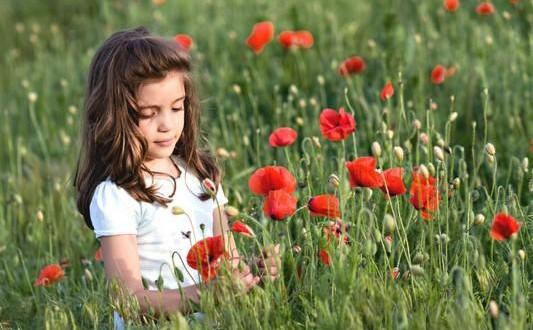 روز ملی گل و گیاه (25 خرداد)