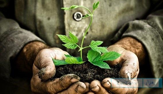جملات روز زمین پاک