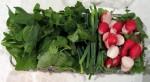 آشنایی با خواص سبزی خوردن