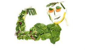 عضله سازهای گیاهی