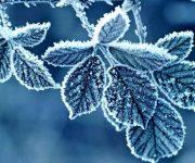 متن کوتاه درباره زمستان