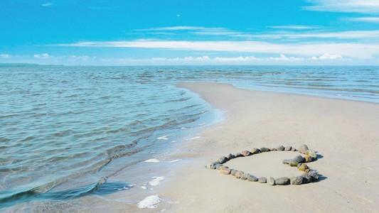 Image result for تصاویری زیبا از پرنده روی دریا