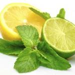 معرفی ۱۴ خاصیت لیمو ترش