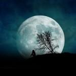 از کوری چشم فلک امشب قمر اینجاست (شهریار)