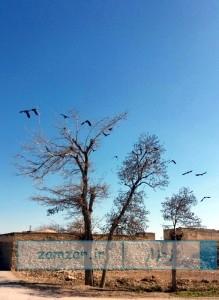 پاییز کرکوند - عکس از امیر