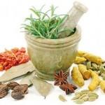 مهم ترین و شاخص ترین گیاهان تسکین دهنده