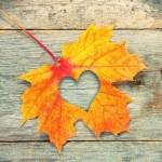 اس ام اس های پاییزی و عاشقانه
