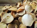 عصاره موسیر و اثرات ضد قارچی