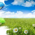 جملات زیبا برای روز هوای پاک (۲۹ دی)