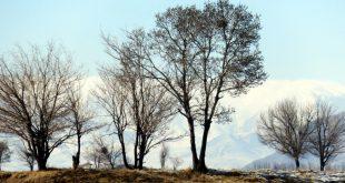 عکس هایی از بارش برف در زمستان 1395 خورشیدی در کرکوند