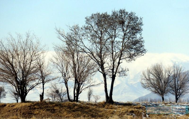 (تصاویر) زمستان 95 کرکوند