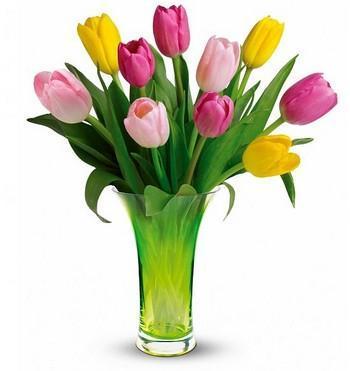 آثار آرامبخش گلهای رنگارنگ