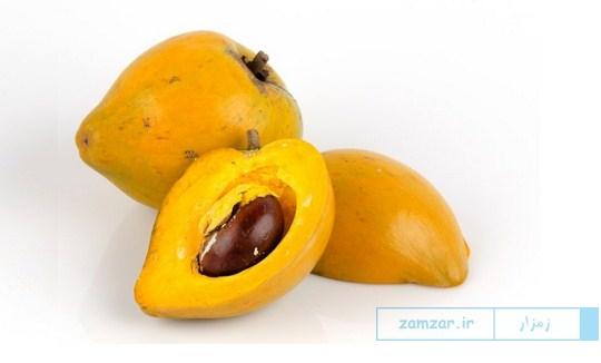 آشنایی با خواص میوه لوکوما