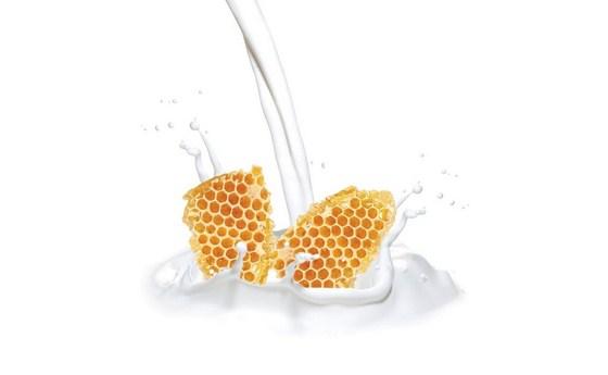 ۷ دلیل خوب برای مصرف شیر و عسل