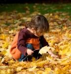 اس ام اس فصل پاییز