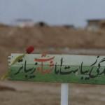 اینان در قیامت به مقام شهید خواهند رسید !