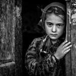 زین گونهام که در غم غربت شکیب نیست … (امیر هوشنگ ابتهاج)
