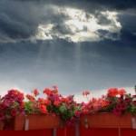 چند شعر کوتاه از شاعران مشهور ایران