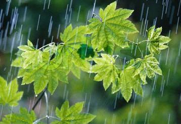 اس ام اس عاشقانه درباره باران