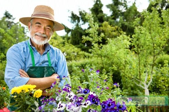 (دلنوشته) خندید باغبان که سرانجام شد بهار