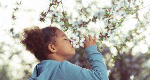 (شعر) رسید مژده که آمد بهار و سبزه دمید