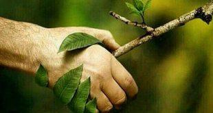 روز طبیعت