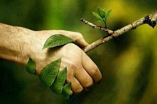 جملات پیامکی تبریک روز طبیعت (سیزده بدر)