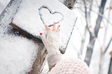 برف زمستانه