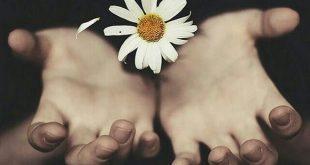 عکس نوشته محبت