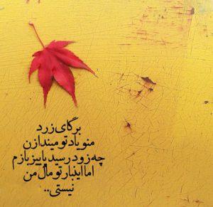 عکس نوشته پاییزی