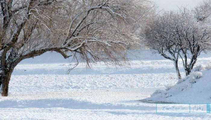 (عکس روز) برف زمستانه